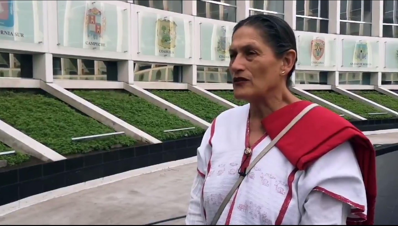 Jesusa Rodríguez, vacas, cerdas y burras