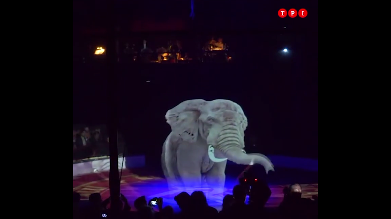 Circus Roncall