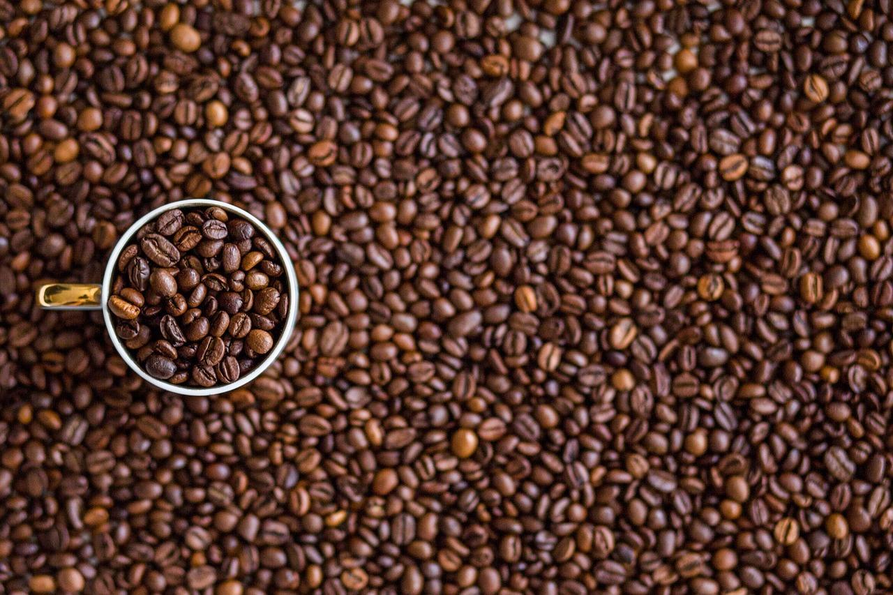 Disquinesia Café