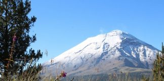 Festival volcanes y mezcal