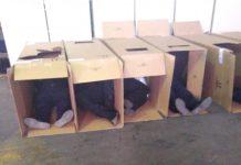 Policías duermen en cajas de cartón por ausentarse a laborar