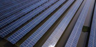 Cofece interpone una controversia constitucional contra política de Sener que limita a renovables